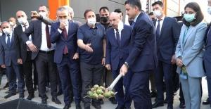 Türkiyenin en büyük ceviz işleme...